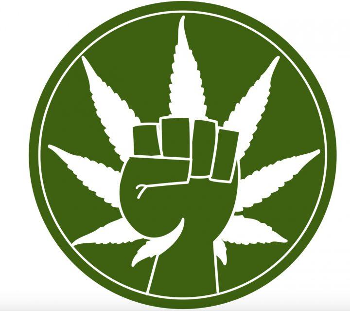 Piratenpartij en DENK populair bij cannabisliefhebber